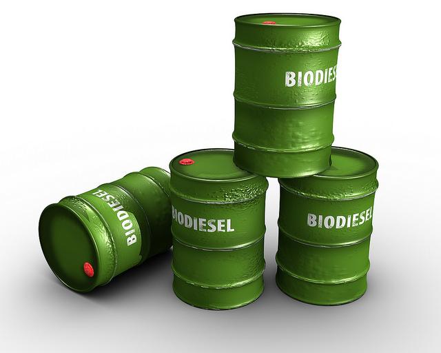 Vitatott, hogy a növényekből előállított bioüzemanyagok mennyire tekinthetők környezetbarátnak / Kép: Mitra Sahara - Flickr