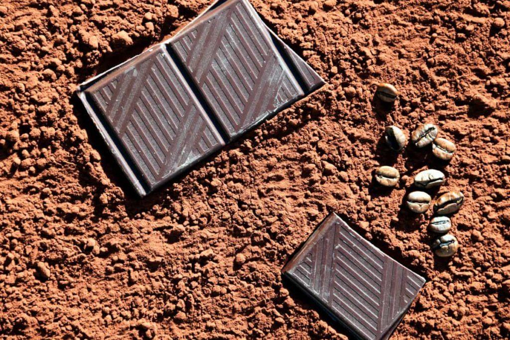 A csokoládéról szóló esettanulmány több pontot is megért volna
